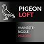 Pigeon Loft - Vanneste Rigole