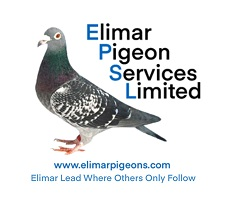 Elimar Pigeon Services Limited Auctions Site