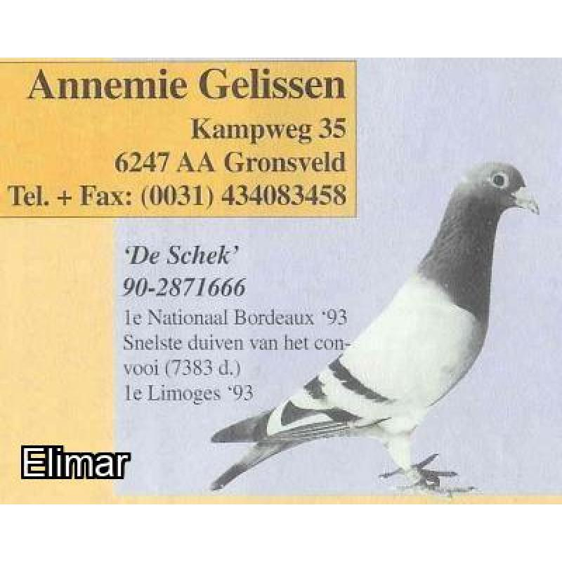 Blue Pied Hen 10E47496 G.Daughter SCHEK666 1st National Bordeaux 1993
