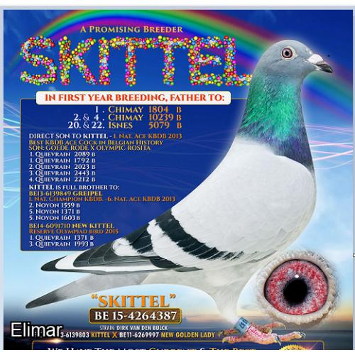 EXCLUSIVE! 1st Time EVER! Direct BLACKPOOL KITTEL x RAINBOW RUBY - Take your pick of the nest!  (21L05954 / 21L05955)